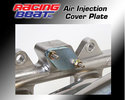 Exhaust Manifold Air Injection Cover Plate